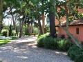 tenuta_boccea_location_roma (45)