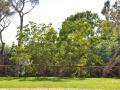 tenuta_boccea_location_roma (49)